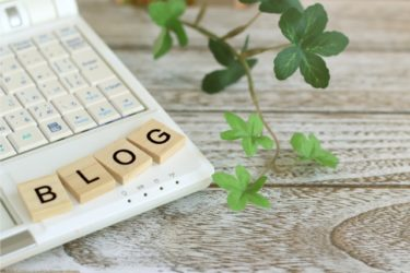 ブログ開始6か月の記事数とPV数を振り返ってみました