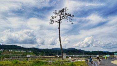 3.11 東日本大震災から10年を振り返って